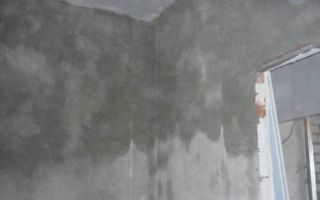 Домашнему мастеру: сколько сохнет штукатурка на стенах